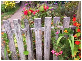 Creative garden fence ideas images Garden fence ideas